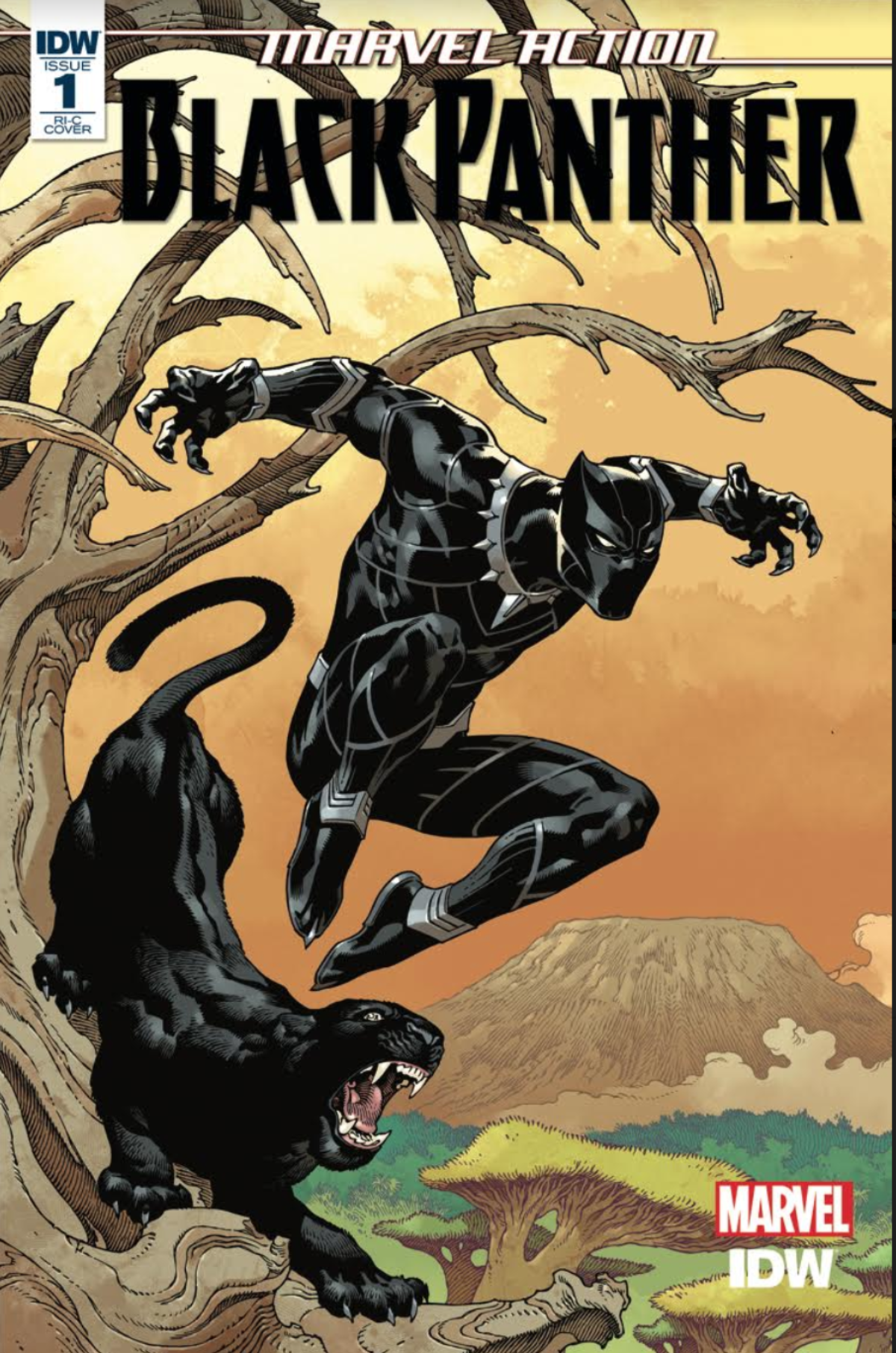 Black Panther 1 Cover C